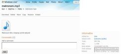 Slika 17 - Windows Live (SkyDrive - prebačena datoteka i parametri)