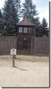 Auschwitz21