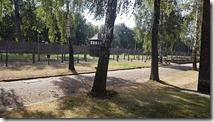 Auschwitz8