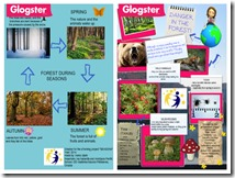 GLOGSTER - SUME - SEASONS