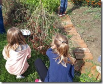Rad u školskom vrtu