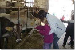 Slika 5. Učenici se boje dodirnuti životinje